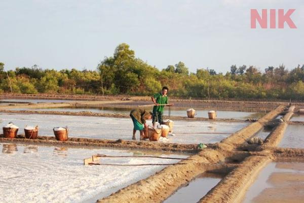 Quy hoạch ruộng muối tại Cần Giờ trong bản đồ quy hoạch chi tiết huyện cần giờ