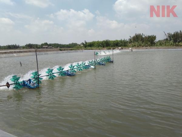Trung tâm nuôi trồng thủy hải sản Bình Khánh, Cần Giờ trong bản đồ quy hoạch chi tiết huyện cần giờ