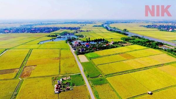 Quỹ đất tại địa phương sẽ được giao cho các đối tượng có nhu cầu và đáp ứng đủ điều kiện tại luật sử dụng đất đai