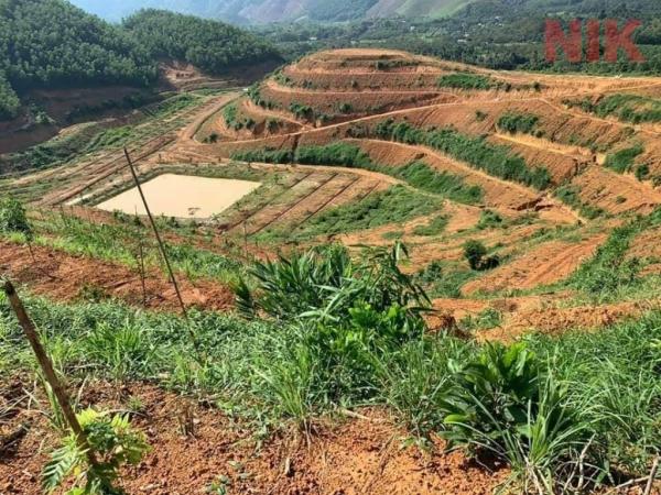Có những trường hợp hạn chế thủ tục mua bán đất nông nghiệp mà người mua và bán cần nắm rõ