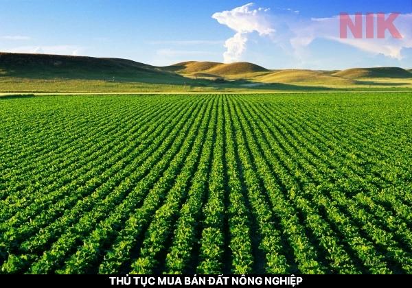Người mua và bán đất nông nghiệp cần phải đảm bảo đầy đủ thủ tục mua bán đất nông nghiệp