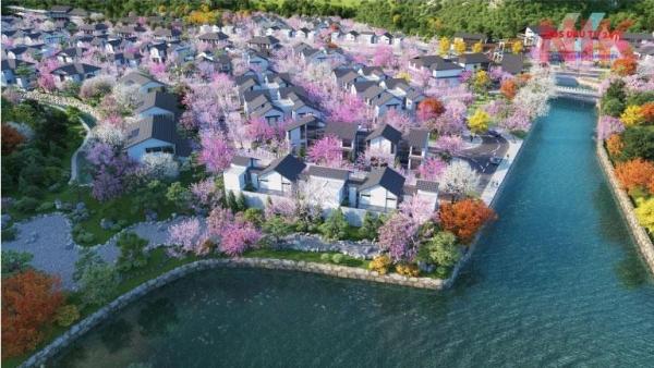Dự án biệt thự khoáng nóng Quang Hanh thuộc bất động sản cẩm phả